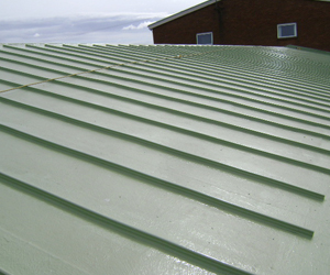 Braedale Roofing Liquid Roofing Systems