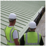 Braedale Roofing Tech Services